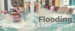 Save-On Flood Insurance